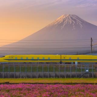 Tokaido Express