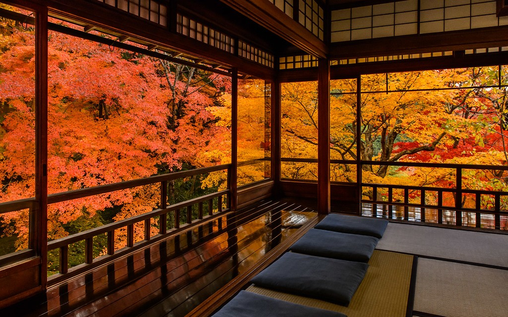 5 Great temples for observing autumn light up in Kyoto 2018